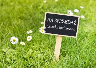 działka na sprzedaż - Dobra (Szczecińska), Łęgi